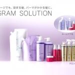 Program solution