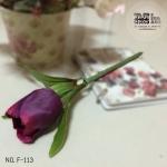 ปากกาดอกทิวลิป