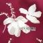 เดรสเกาหลี พร้อมส่ง ชุดเดรส สีแดงเบอร์กันดีพิมพ์ลายดอกไม้ thumbnail 17