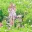 พร้อมส่ง เสื้อผ้าแฟชั่น พิมพ์ลายดอกซากุระสีชมพูหวาน thumbnail 2